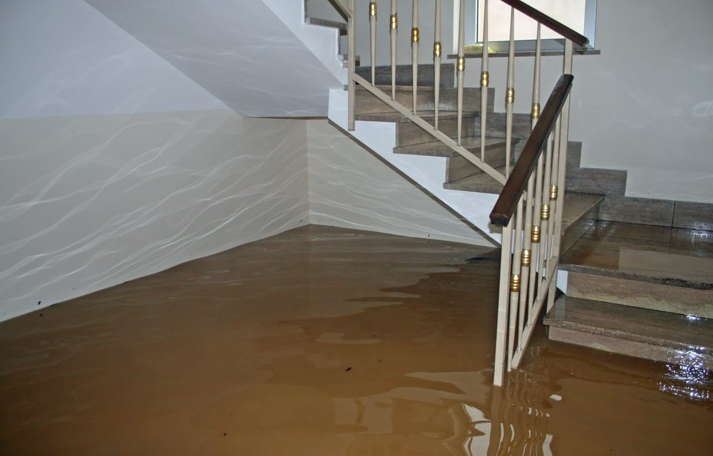 Image result for types of water damage